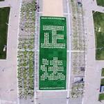 法轮功学员在旧金山市政府广场排字、炼功讲真相