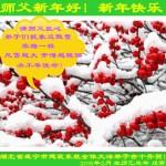 大陆各地区法轮功学员恭祝李洪志大师过年好(组图)
