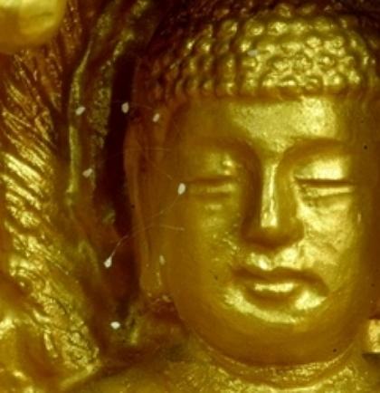 开在佛像脸上的优昙婆罗花。(大纪元)