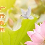 曝光真相 擺脫「自焚」噩夢 (圖)