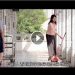法轮大法的美好~教师篇(视频)