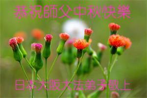 日本大阪大法弟子恭祝師父中秋快樂!